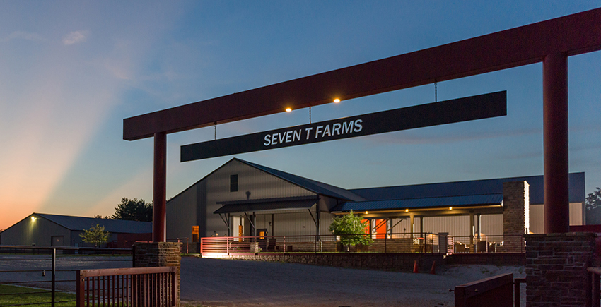 Seven T Farms in Evening